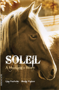 Soleil, A Mustang's Story